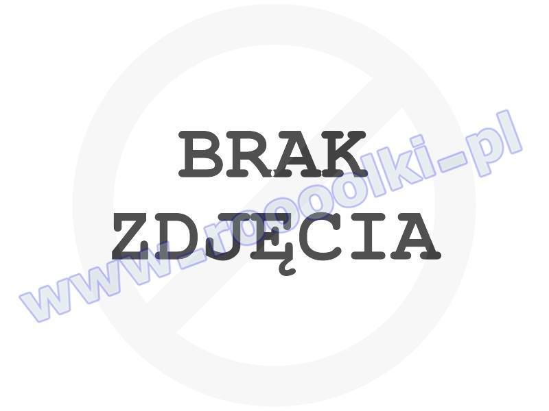 Torba Dakine Venture Duffle 40L Pyrite przeceny